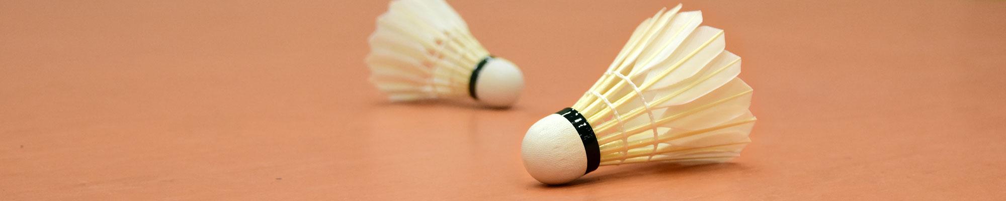 banner-badminton