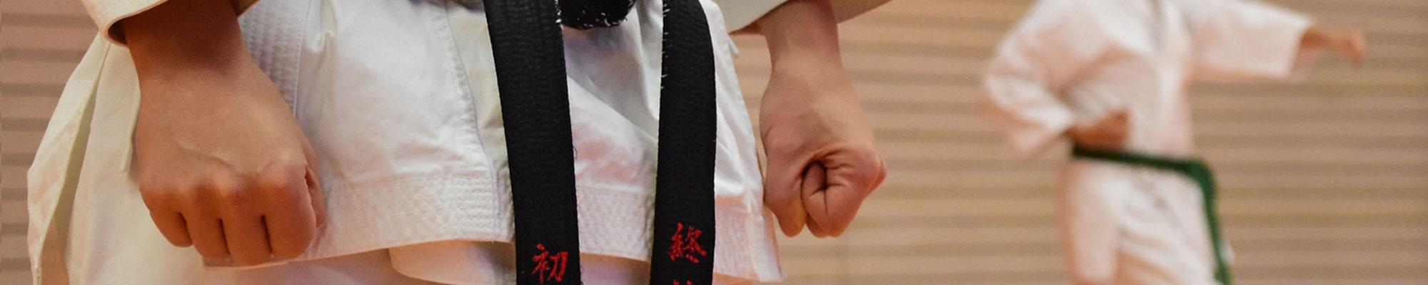 banner-karate